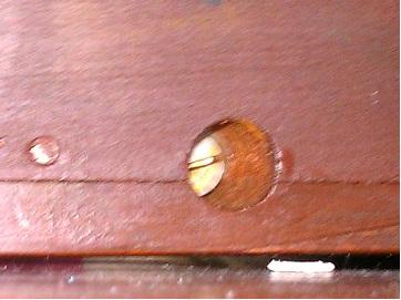 Name:  99 base hinge screw.jpg Views: 287 Size:  42.2 KB